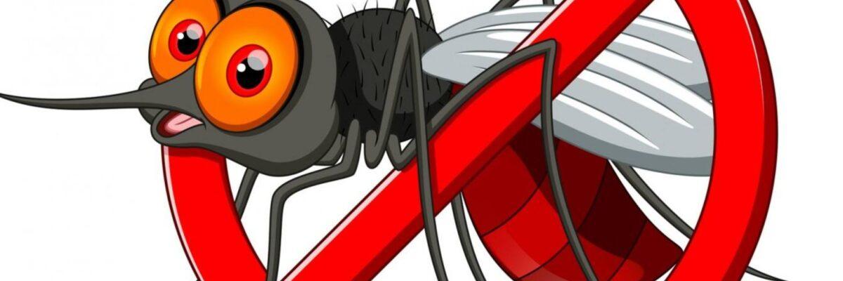 Dezinsecție țânțari la Săcueni și în satele aparținătoare!